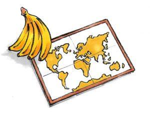 qualità banane equosolidali